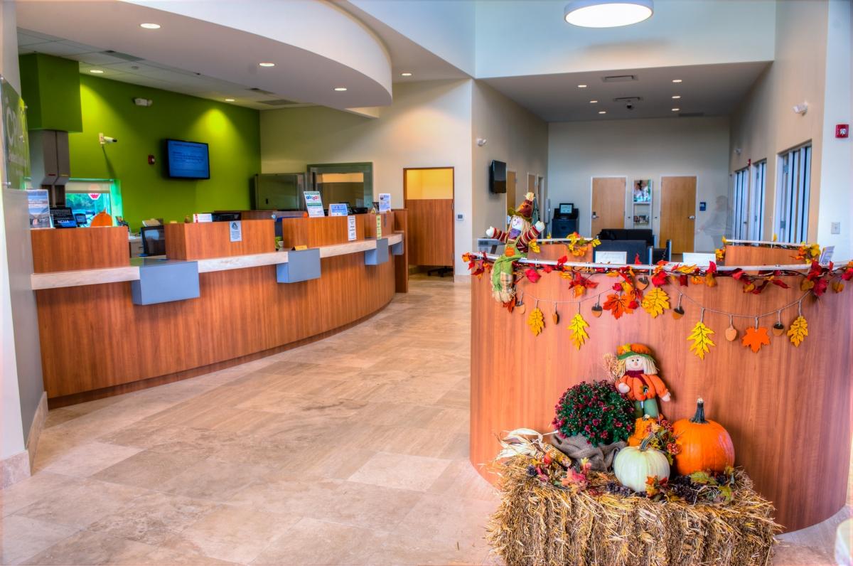 Cpm Federal Credit Union >> Cpm Federal Credit Union Daniel Island Architectural